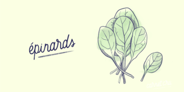 Épinard_Légume-Blog