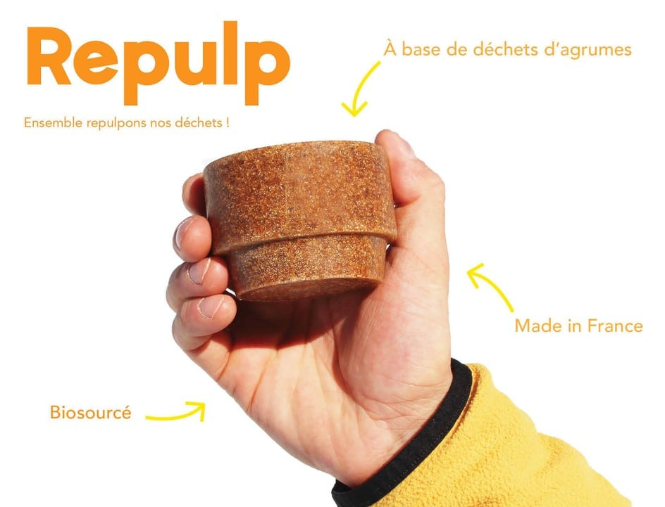 Repulp tasses agrumes