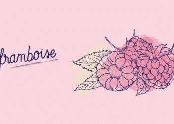 Framboise_Fruit-Blog