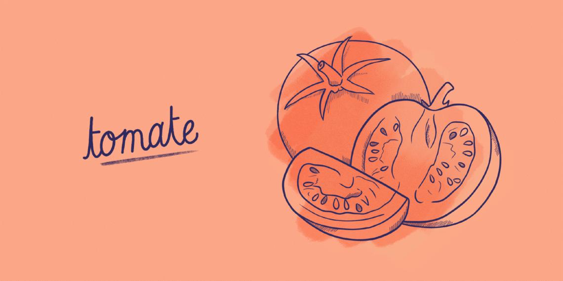 Tomate_Fruit-Blog