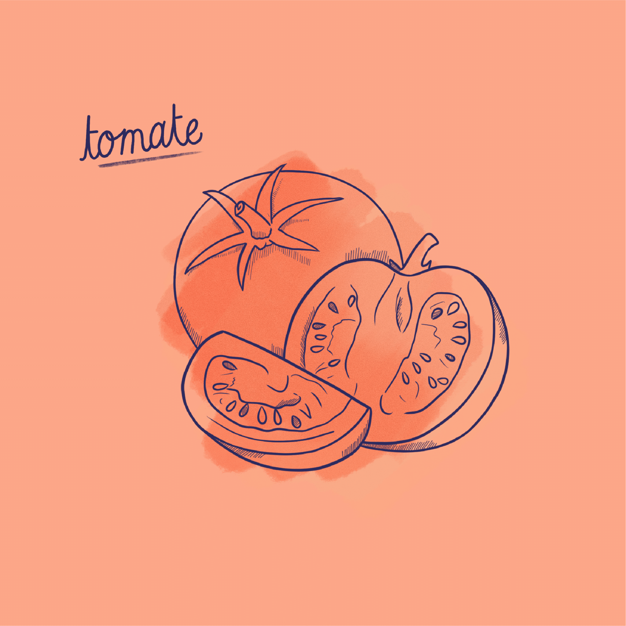Tomate_Fruit-Post