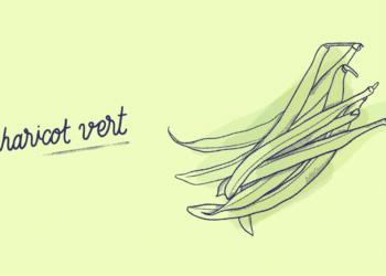 Haricots-Verts_Fruit-Blog