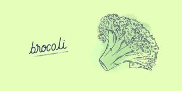Brocoli_Légume-Blog